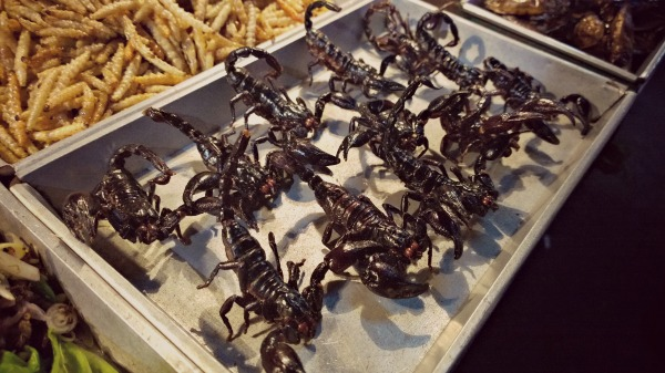 Scorpion khao san road jpg